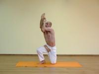 Yoga asana: 079-Vatayanasana