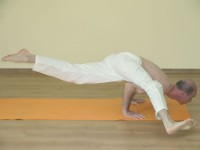 Yoga asana: 169-Koundinyasana B