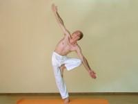 Yoga asana: 060-Vrkshasana H