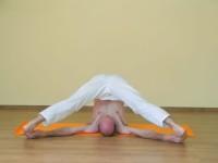 Yoga asana: 198-Supta Konasana A